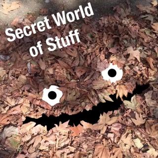 Скрытый мир вещей (6 sec)