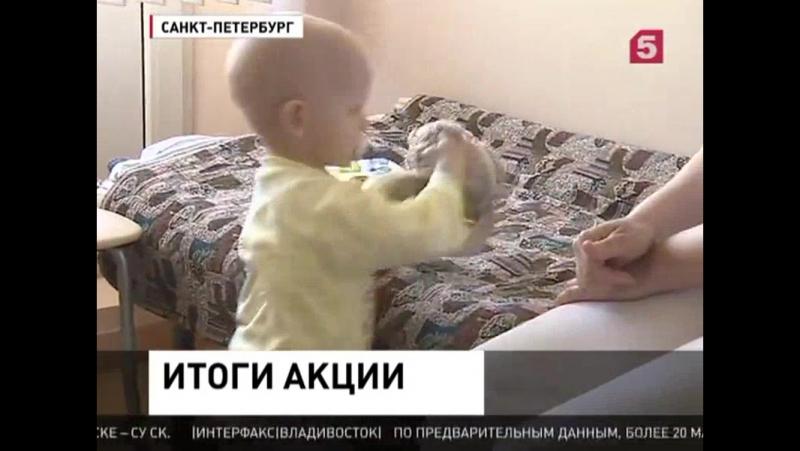 Пятый канал подводит итоги акции День добрый дел для Риты Борововой
