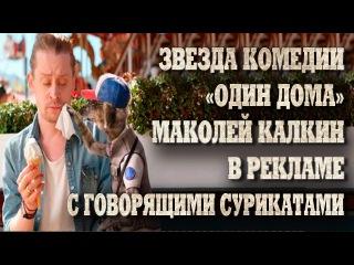 Звезда комедии «Один дома» Маколей Калкин в рекламе с говорящими сурикатами