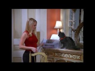 Sabrina The Teenage Witch (7x02.The.Big.Head)