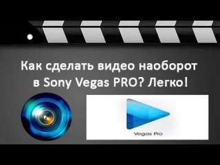 Программа делает видео наоборот скачать