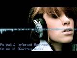 Felguk &amp Infected Mushroom - Shine On (Karetus Remix)