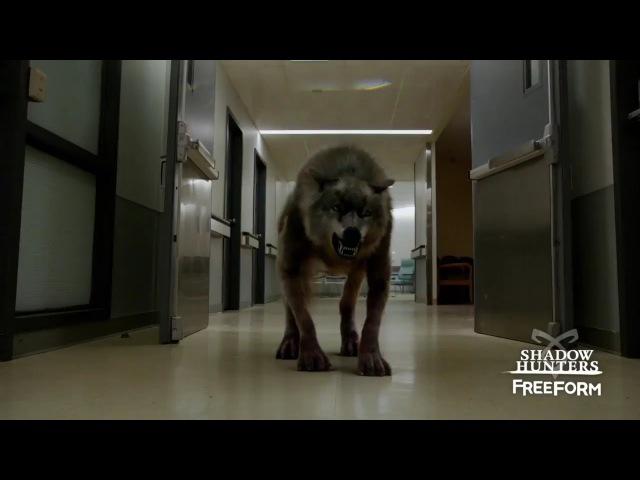 Сумеречные охотники Shadowhunters 2 сезон 3 серия Промо Parabatai Lost HD