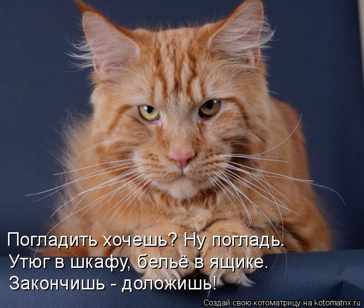 https://pp.userapi.com/c626720/v626720271/52cd6/VDaLgah3_Yo.jpg