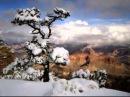 Лёха Снег верил