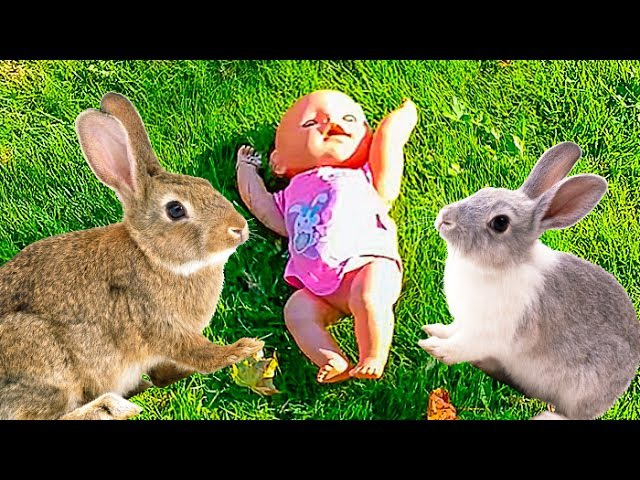 ✿ ВЛОГ VLOG Едем на трамвае в Слотер парк и кукла Беби Бон Видео для детей Kids Nastushik Show
