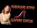 НОВЫЙ СБОРНИК КЛИПОВ - НОВЕНЬКИЕ МУРКИ. (Студия Шура) СБОРНИК ШАНСОНА НОВИНКИ 2016. ...