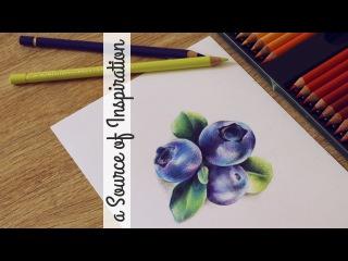 КАК РАСКРАШИВАТЬ КАК БОСС! ♡ Как рисовать цветными карандашами, секреты техники | Katerina Rise