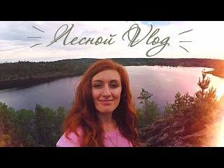 Лесной Vlog 🌿 Скалы, Беличий залив