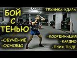 Как делать бой с тенью - основы, обучение + кардио. Тренировка дома rfr ltkfnm ,jq c ntym. - jcyjds, j,extybt + rfhlbj. nhtybhjd
