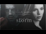 winter soldier &amp black widow  eye of the storm