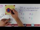 ORAN - 6.Sınıf Matematik (CYT)