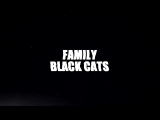 Family Black Cats by Angel