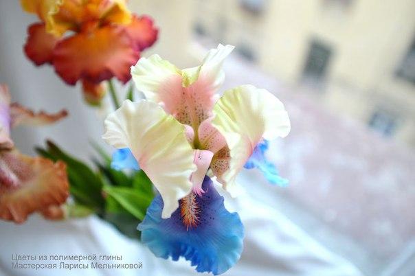 Цветы из полимерной глины(холодный фарфор) Жителей... / IT Analytics
