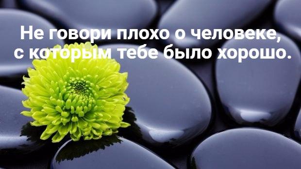 https://pp.vk.me/c626722/v626722244/443b5/cMtIhS6dx4k.jpg