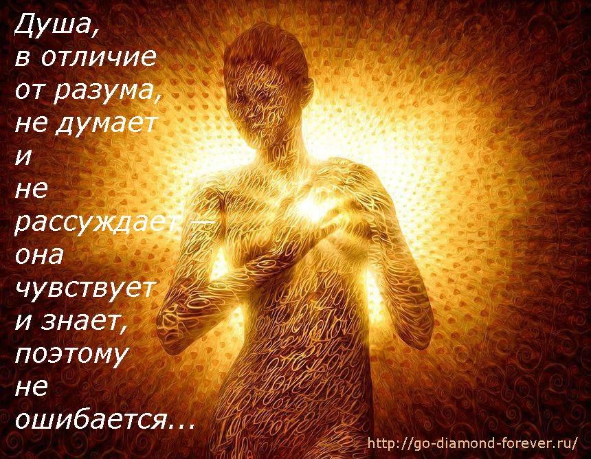 https://pp.vk.me/c626722/v626722460/360be/E7Gj32rDoTU.jpg