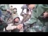 Бойцы Хизбаллы и русский солдат в перерывах между боями с террористами