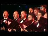 Corala Armonia -
