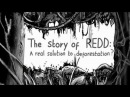 The Story of REDD A real solution to deforestation