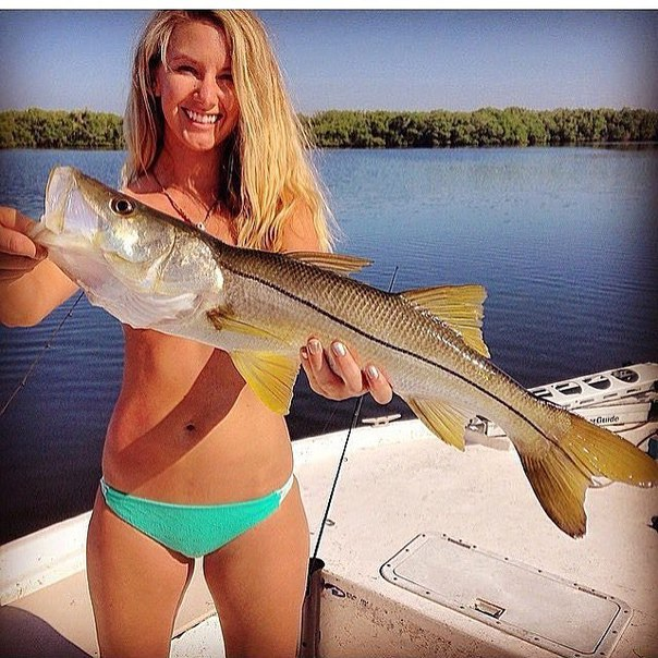 #fishbras