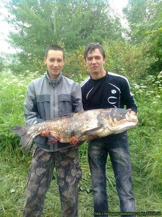 Рыбалка в Тольятти и Самарской области | ВКонтакте