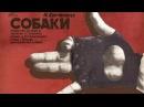 DOGS Рок драма СОБАКИ 1998