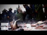 На северо-востоке Китая стартовал ежегодный сезон зимней рыбалки