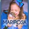 Тропические бабочки | Доставка цветов Калуга