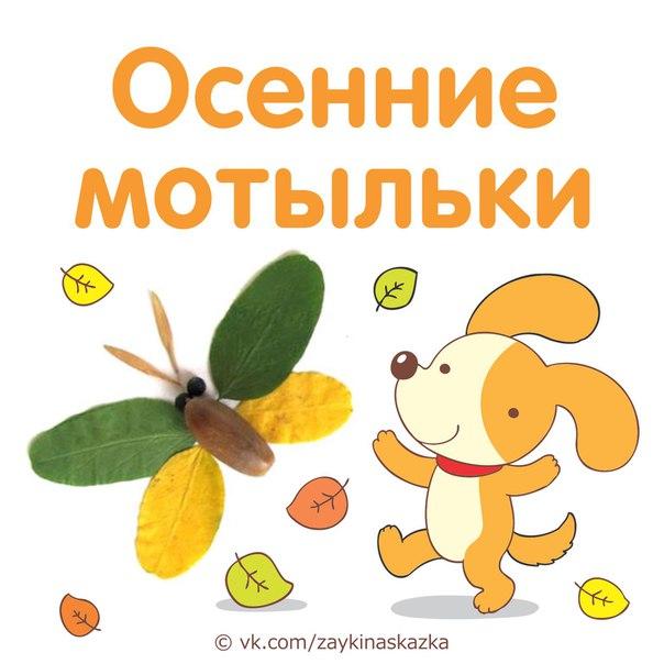 Осенние поделки «Мотыльки»