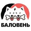 """Лакомства и добавки для собак """"Баловень"""""""