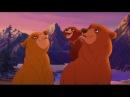 Братец Медвежонок все серии подряд часть 1