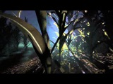 Первый геймплей Outlast 2