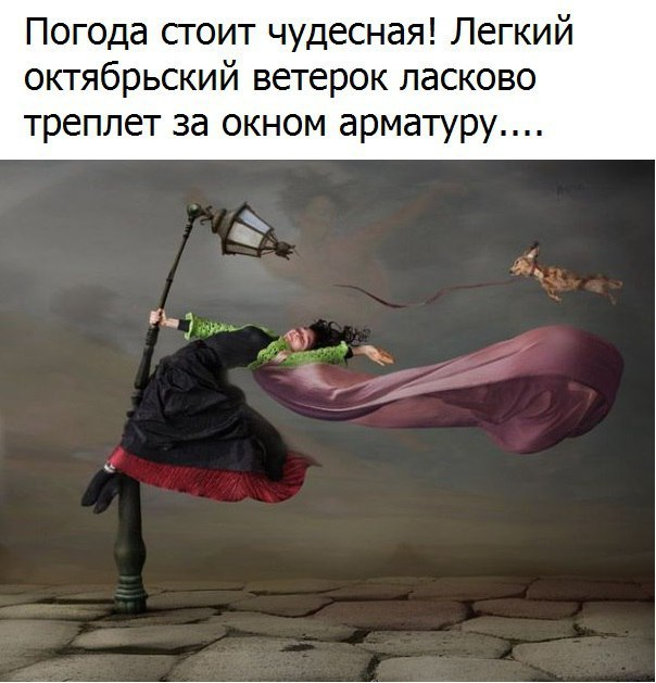 https://pp.vk.me/c626725/v626725160/2ec6b/wjzU4tvoJ9M.jpg