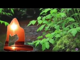 Целительная чарующая музыка Рейки со звуком ручья: волшебный час расслабления, ...