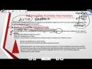 Endokrin Sistem 3 Paratiroid Bezi - Adrenal Bez Korteks Bölgesi - 11. Sınıf Biyoloji Konu Anlatımı
