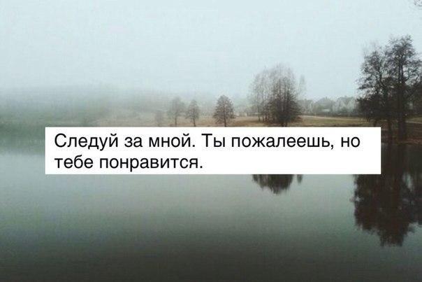 https://pp.vk.me/c626726/v626726478/f733/EC2szcC2TiA.jpg