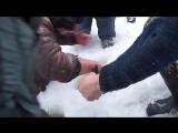 Рыба-русалка — Клёвое место — Видео