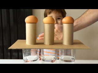 Simple Science Experiments You Can Do With Eggs Before Breakfast