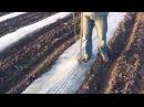 Посадка арбуза под пленку