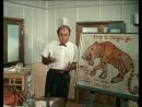Полосатый рейс Михаил Боярский Ап и тигры у ног моих сели
