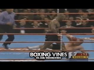 Tyson vs Botha (Boxing Vines)   vk.com/boxingvines