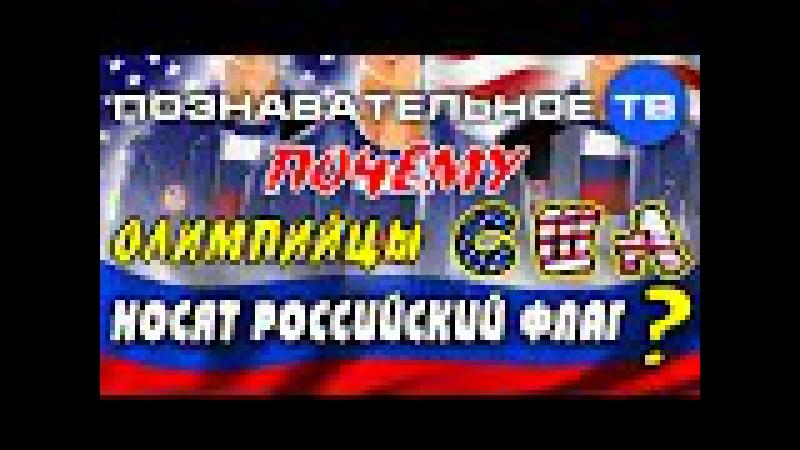 Почему олимпийцы США носят российский флаг? (Познавательное ТВ, Артём Войтен ...