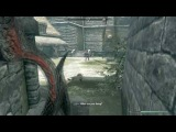 Skyrim Saving Roggvir from Execution in Solitude