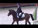 Весенний Кубок КСК «Виват, Россия!» по выездке и конкуру для всадников, стартующих на пони.