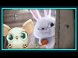 Тайная жизнь домашних животных или Мой маленький питомец. мультик игра для детей. Новинка