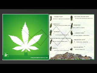 Marijuana Breath Mix by dj sudo