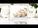 Белые розы надежды...