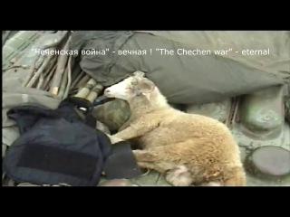 В/Ч 6846 ВВ МВД РФ .14 комендатура н/п Курчалой , Чеченской республики.2000-е года.