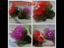 Organze Kurdele oyaları BÜZMELİ LALE ÇİÇEĞİ Forex flower health flower holiday flower Taksim flower