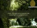 wap.neoza.ru_7cca2574b539016715d7dc7f343101be